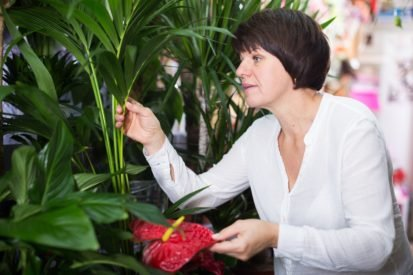 Health: cold and flu viruses also room protect plants