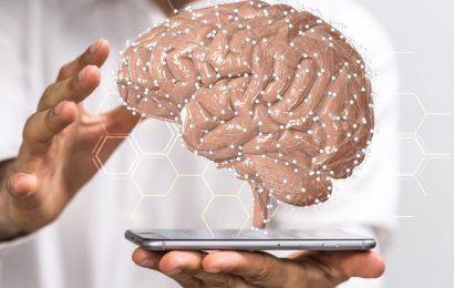 Brain study: a research team has solved the mystery of the human intelligence