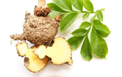 Natural diet: With the Asia-konjac-tuber Slimming