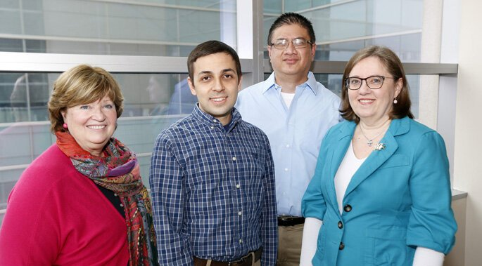 Study merges big data and zebrafish biology to reveal mechanisms of human disease