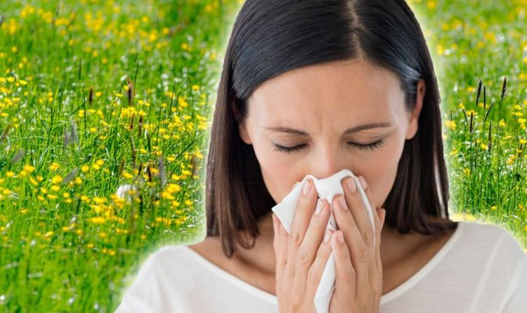 Pollen count warning: Hay fever patients at risk today – how to treat symptoms