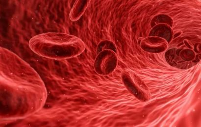 Blood flow command centre discovered in the brain