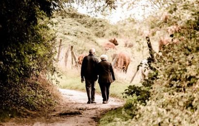 A new pathway for an anti-aging drug