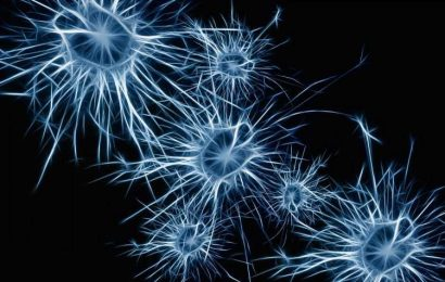 Researchers study healthy ALS neurons as way to understand resistance to the disease