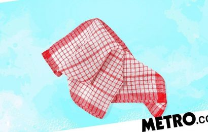 You should wash your tea towel every day unless you want to risk food poisoning