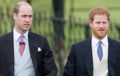 Prince William Thinks Harry Is 'Going Overboard' Keeping Archie Private