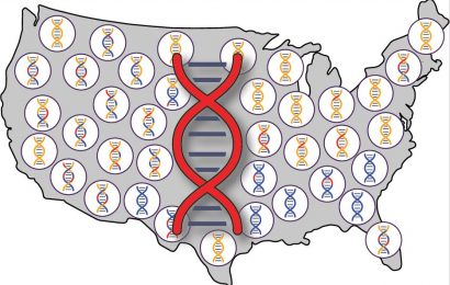 Descendants of early Europeans and Africans in US carry Native American genetic legacy