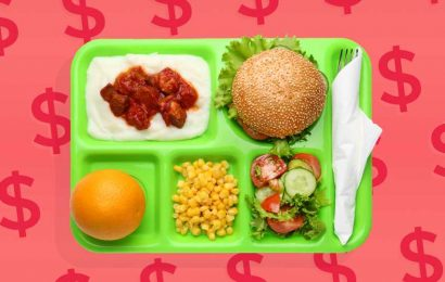 America Has a School Lunch Debt Crisis