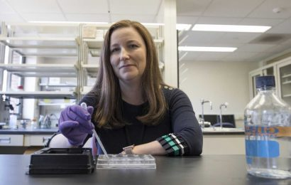 Seizures in babies: Team sheds light on why they have lifelong effects