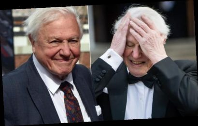 David Attenborough health: When the Seven Worlds, One Planet presenter 'almost died'
