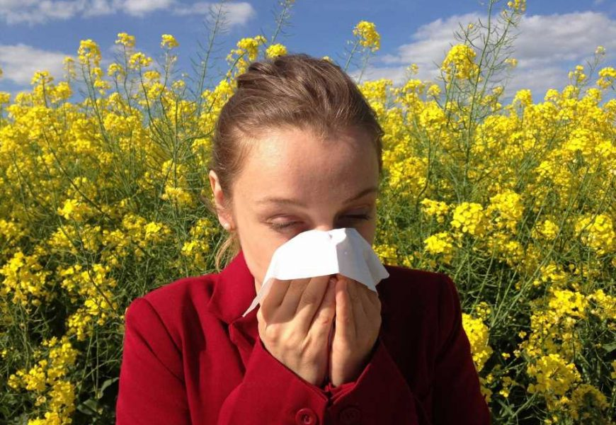 Search for the source of antibodies would help treat allergies