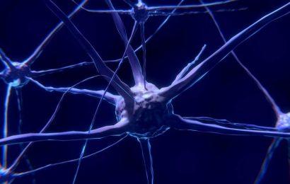 Sugar-coating proteins can help understand brain disease