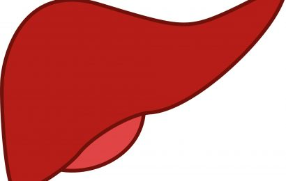 Too much of a good thing may lead to too much of a liver as well
