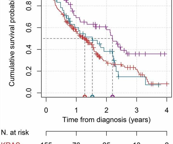 Overall survival in patients with lung adenocarcinoma harboring 'niche' mutations