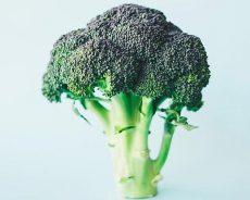 Broccoli, Lentils