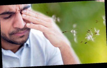 Sore eyes cause: What causes sore eyes? Is it hay fever or coronavirus?