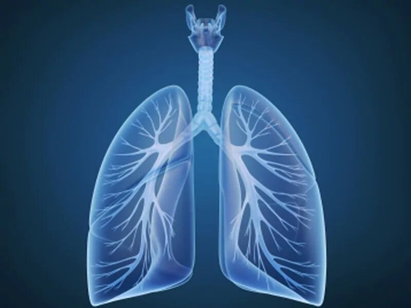 Odds of pulmonary embolism up for obese COVID-19 patients