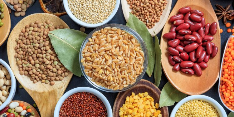 Diet: the brain performance with legumes Natural medicine to boost natural healing process portal