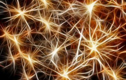 New perspectives to treat neuropsychiatric diseases