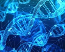 Epigenomic platform detects early-stage pancreatic cancer