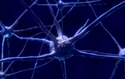 New mechanism affecting nerve impulses discovered