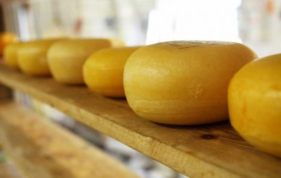 Diet modifications—including more wine and cheese—may help reduce cognitive decline