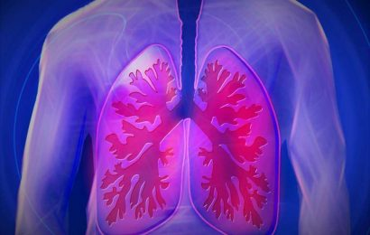 Immune cells discovered in the lungs improve virus defense