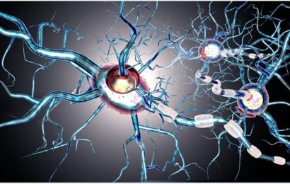 Effect of Environmental Toxicants on Developing Neurodegenerative Conditions
