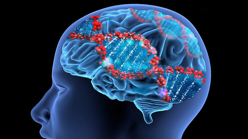 Discovery of Schizophrenia Gene Could Advance Research, Therapies