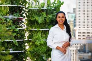 Bellami's Nikki Eslami's New Growth Pattern