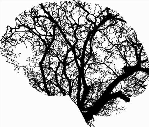 A new model of Alzheimers progression
