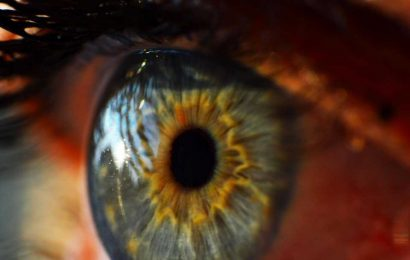 Nerve fibre loss and rise in key immune cells on eye surface may signal 'long COVID'