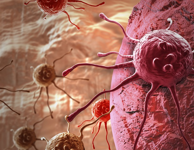 Study reveals effective strategy to extend the benefit of immunotherapy for prostate cancer