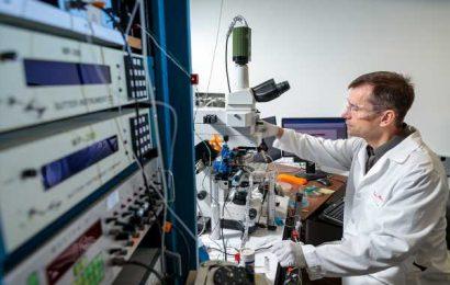 $12.2 million to fund new Conte Center to study neurosteroids