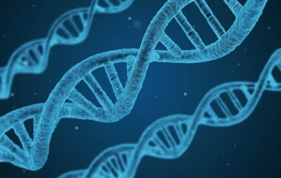 Genetic predisposition to rare form of stroke identified