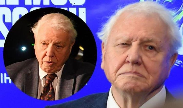 'Sir David Attenborough doesn't look well it's worrying' – concerned fans speak out